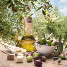 Olio Pangia: produttore di Olio extravergine di oliva Molise DOP