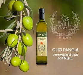 Olio Pangia DOP - bottiglia e latta per la ristorazione albergheira. Extra virgin olive oil Pangia - Italy / Extra natives Olivenöl Pangia - Italien.