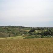 Paesaggio a Rotello