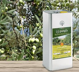 Anteprima contenitore da 5 litri per olio extra verginae d'oliva